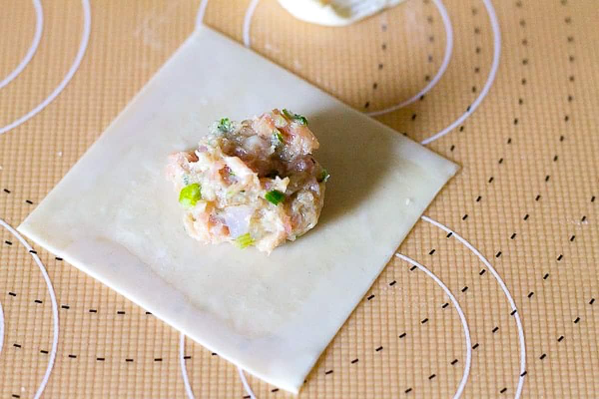 pork dumpling filling on a wonton