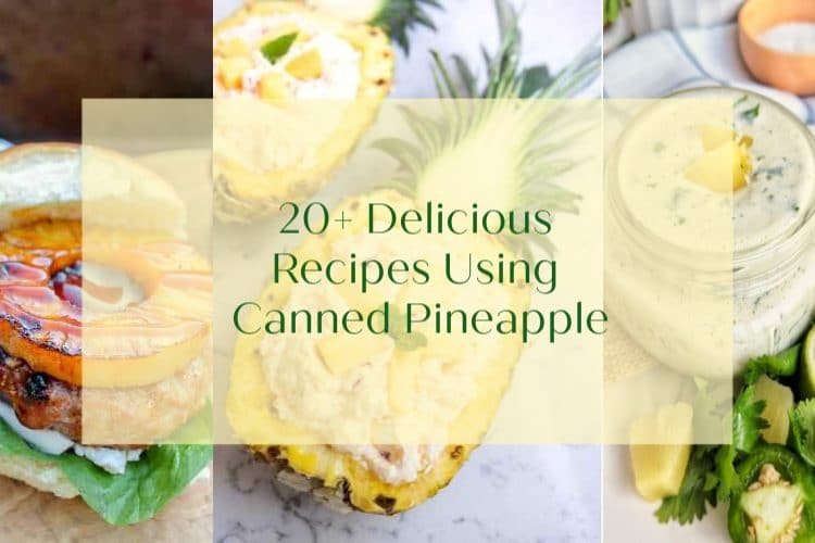 canned pineapple cover image