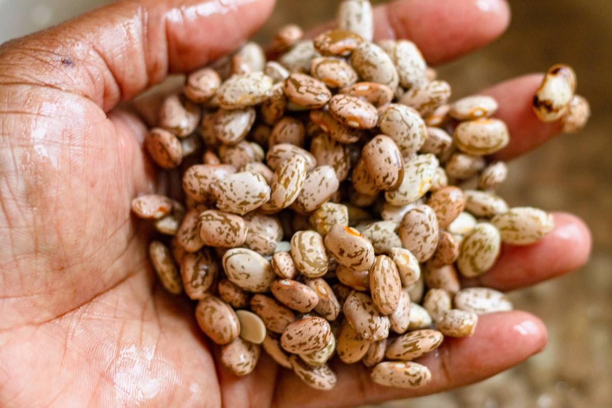 rinsed beans