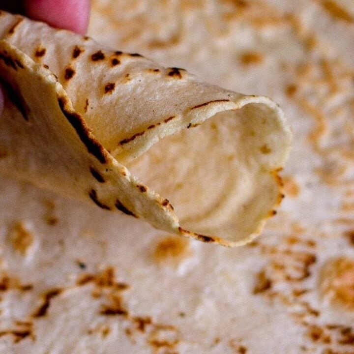 rolled hand-held corn tortilla close up