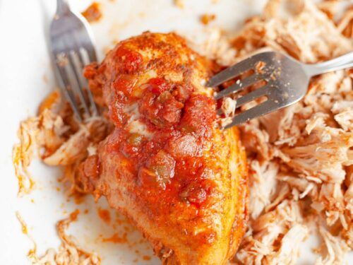 a whole piece of salsa chicken