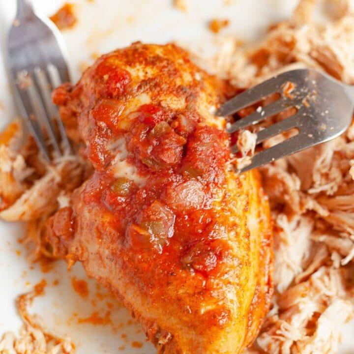 a whole piece of salsa chicken