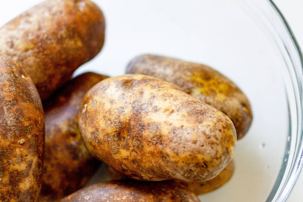 russet potatoes in a bowl